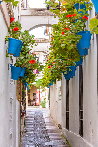 Spain, Andalusia, Cordoba. Calleja de las flores (street of the flowers) in the old town